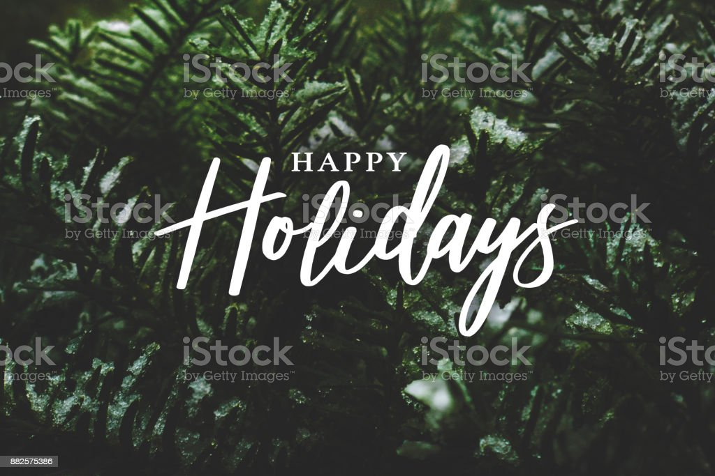 Happy Holidays Calligraphy Over Pine Branches Covered in Snow stock photo