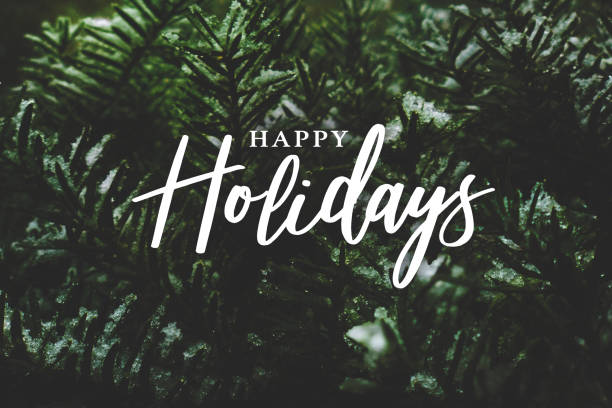 Happy Holidays Script Over Christmas Evergreen Pine Tree Background stock photo