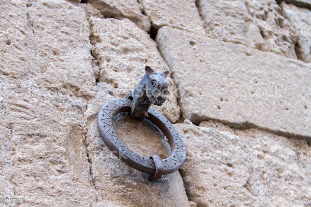 Happy Horse Ring Tie stock photo