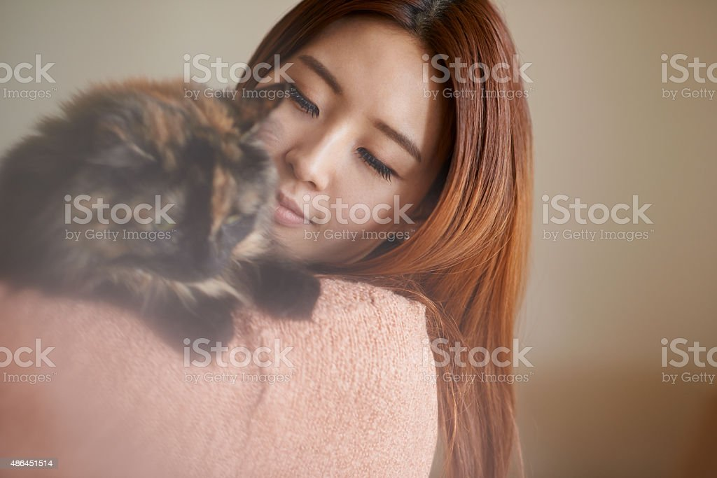 Happy is the home with a cat stock photo