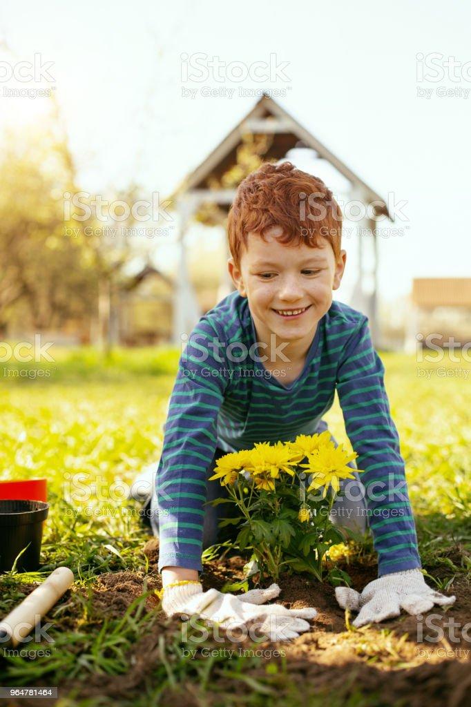 Happy joyful boy smiling royalty-free stock photo