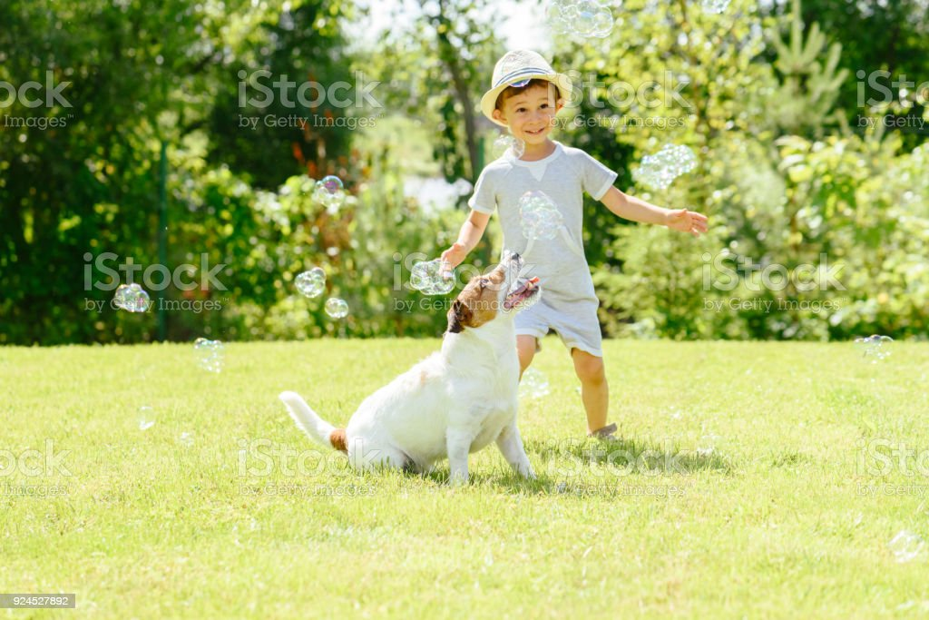 Happy kid and pet dog playing witn soap bubbles at backyard lawn Family has enjoying fine summer day 2-3 Years Stock Photo