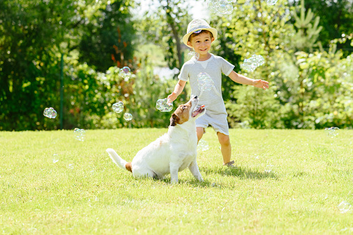 Happy kid and pet dog playing witn soap bubbles at backyard lawn