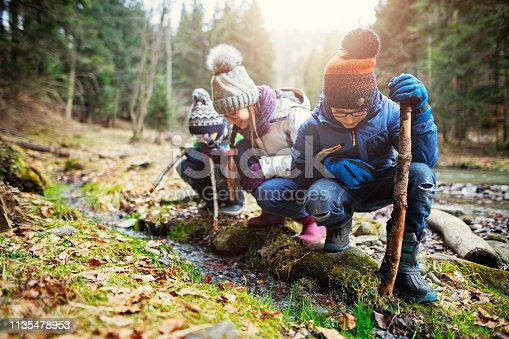 Kids hiking in winter forest. Happy kids hikers are crouching at the bank of small stream and are playing with sticks Cold winter day. Nikon D850