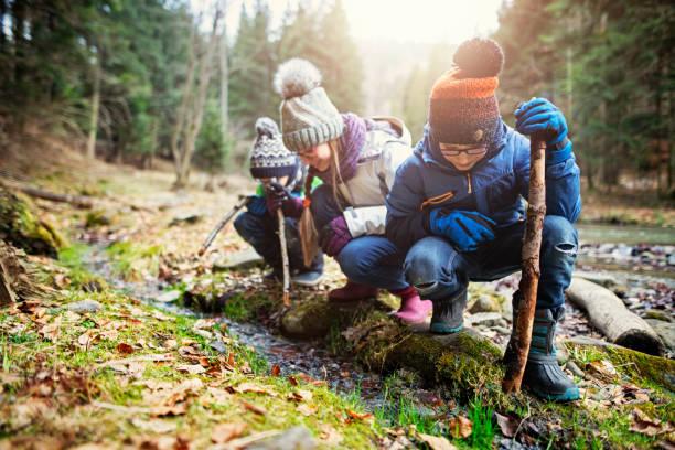 happy kids wandelers spelen in stream met stokken - bos spelen stockfoto's en -beelden