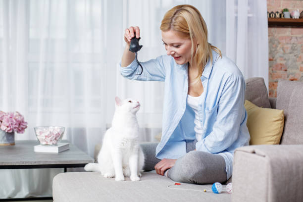 Happy lady enjoying game with pet picture id907971062?b=1&k=6&m=907971062&s=612x612&w=0&h=vkroezp9mtuqtkdbis8pjf64k8i9u p734z zusfj6w=
