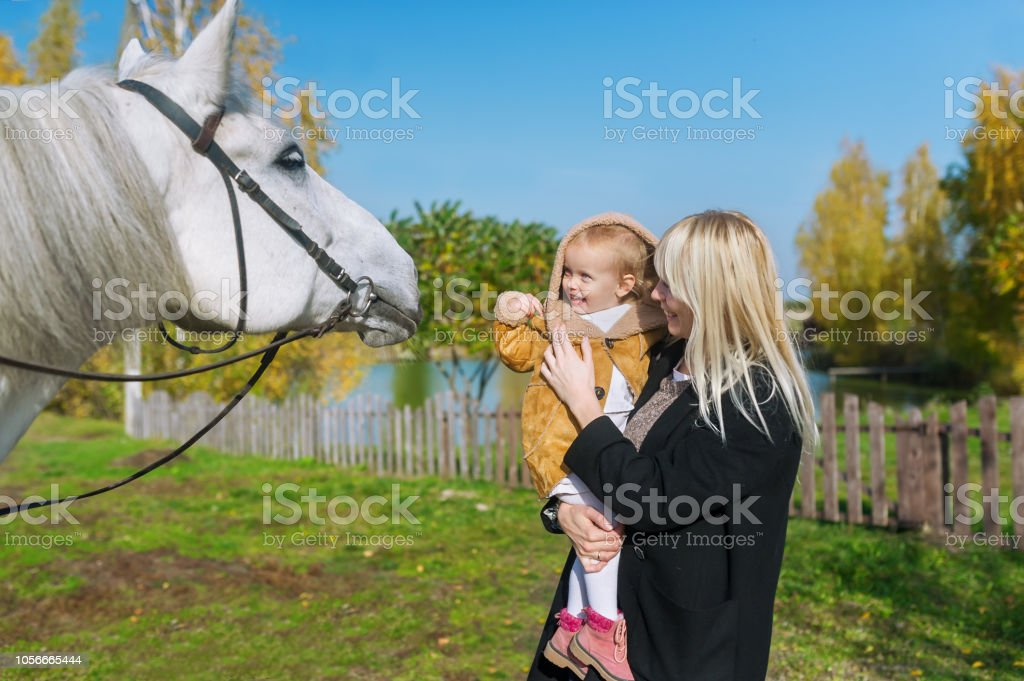 Happy Laughing Mother And Baby Daughter Bonding With White Beautiful Horse Stock Photo Download Image Now Istock