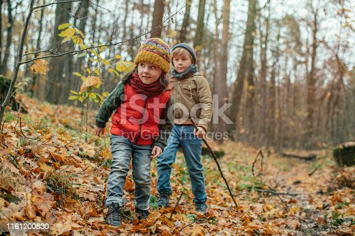 515278306 istock photo Happy little boy and girl exploring autumn nature in forest 1161200830