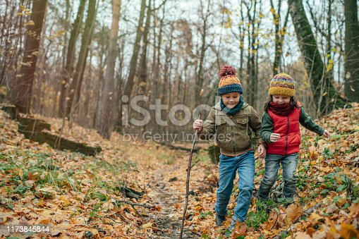 Little boy and girl exploring nature in autumn forest