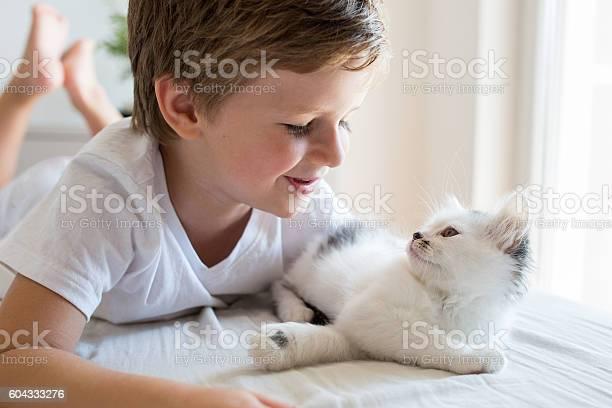 Happy little boy having fun with his kitten picture id604333276?b=1&k=6&m=604333276&s=612x612&h=1mza2lijqcd df9khc0hvx2zw1jtk73vwd izai5qiu=