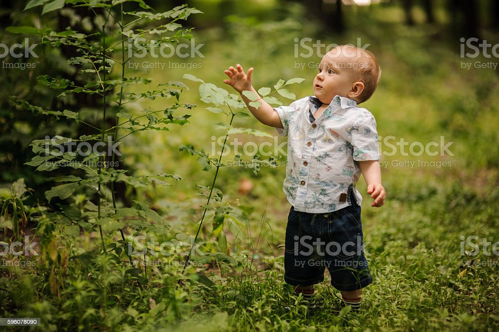 happy little boy in the park royalty-free stock photo