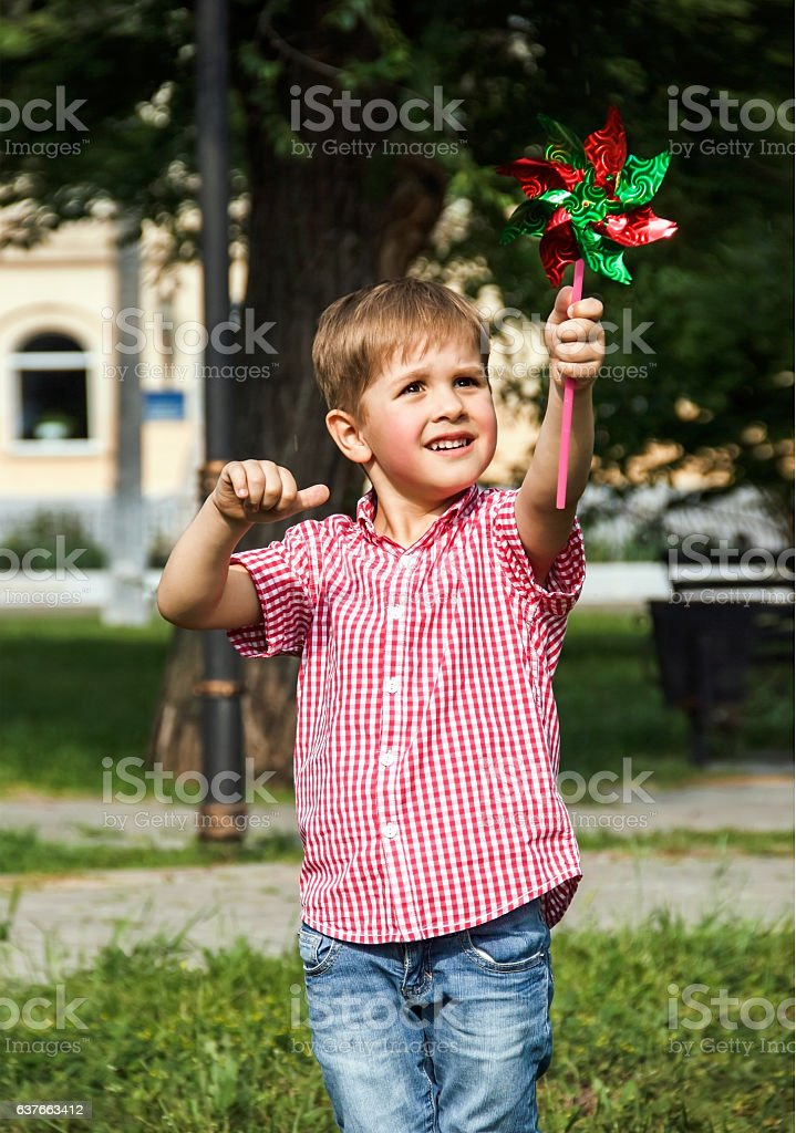 Happy little boy on a picnic in the park stock photo