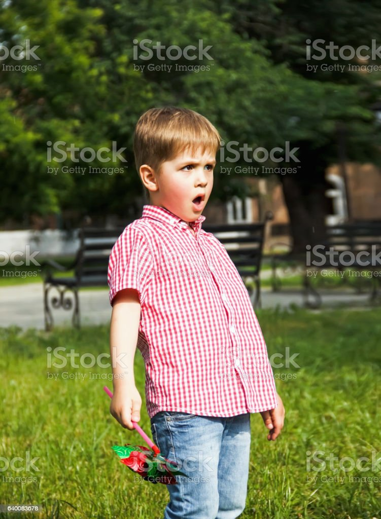 Happy little boy playing in the park,  the summer day stock photo
