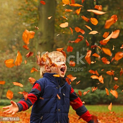 A 4 year old boy is playing with colorful autumn leaves in the garden. The child is happy and excited as he is jumping and throwing a bunch of leaves in the air and over his head. A boy is wearing warm clothing in red and blue colors.