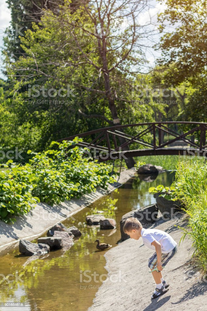 Happy little boy playing with water at the pond in the city park on a summer sunny day. Close up. Beautiful summer background with copy space royalty-free stock photo