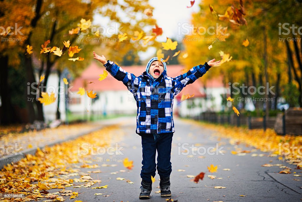 Happy little boy throwing leaves in autumn park. stock photo