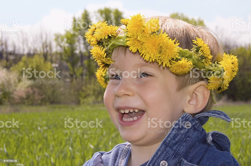 happy little boy with wreath of dandelions royalty-free stock photo