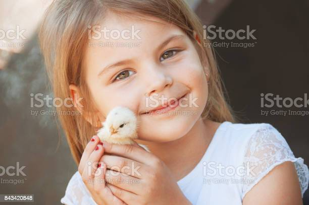 Happy little girl holds a chicken in his hands child with poultry picture id843420848?b=1&k=6&m=843420848&s=612x612&h=pgczrlkhqdaslqmddiz5gkczh6aq5pnhj87m54uy0bm=