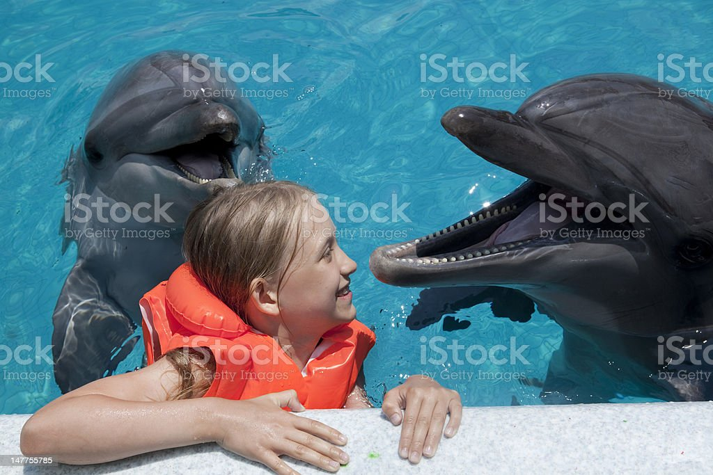 Happy Little Girl Laughing with two Dolphins in  Swimming Pool. stock photo