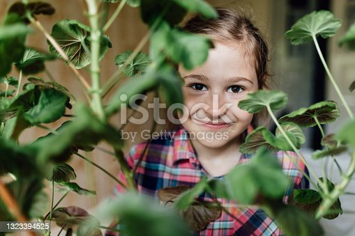 istock happy little girl looking at the camera among the branches of a vase flower. 1323394525