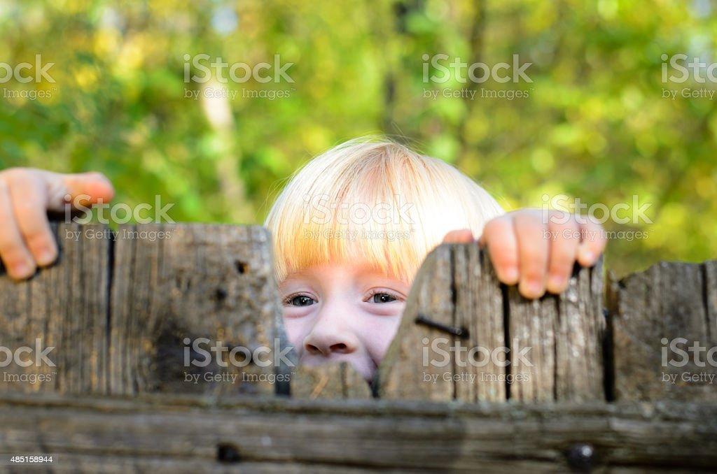 Happy Little Girl Peeking on Wooden Fence stock photo