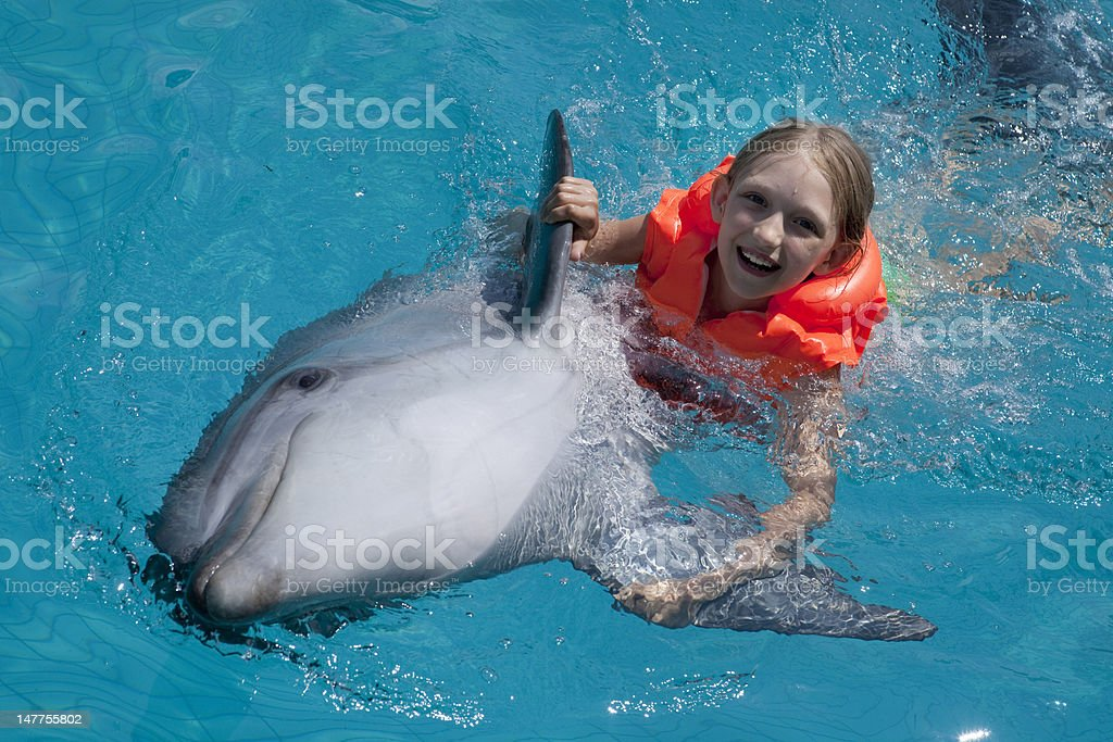 Happy Little Girl Riding the Dolphin in  Swimming Pool. stock photo