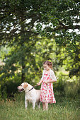 istock Happy little girl with her dog labrador on a walk in summer nature. 1137369343