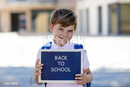 istock Happy little kid boy with backpack or satchel and glasses. Schoolkid on the way to school. Healthy adorable child outdoors On chalk desk Bye bye school. Back to school concept 1163316603