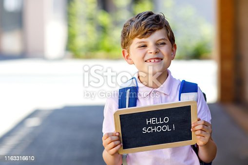 istock Happy little kid boy with backpack or satchel and glasses. Schoolkid on the way to school. Healthy adorable child outdoors On chalk desk Hello school. Back to school concept 1163316610