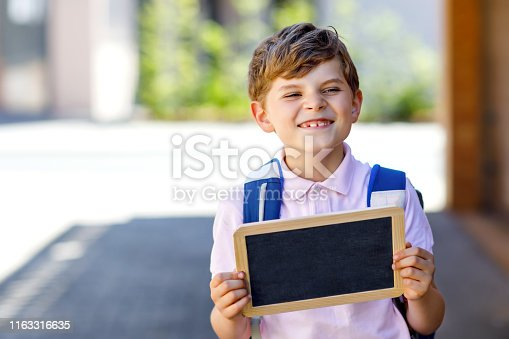 istock Happy little kid boy with backpack or satchel and glasses. Schoolkid on the way to school. Healthy adorable child outdoors. Empty chalk desk for copy space in hands. School's out or back to school 1163316635