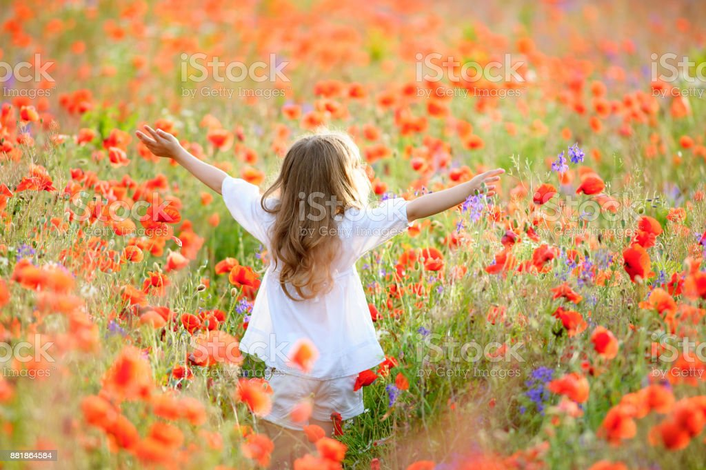 happy little kid girl with her arms to the sky at the blooming poppy field stock photo