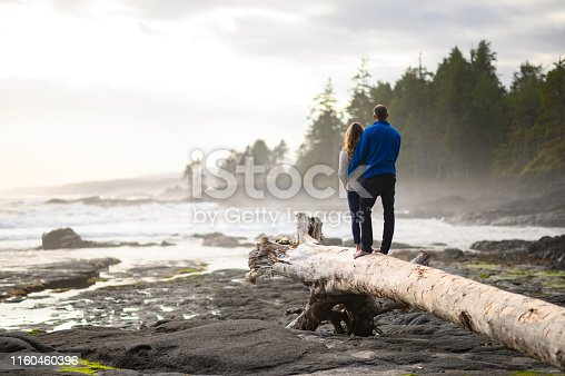 Couple looking away while relaxing on a fallen tree. Woman and man are standing on a log at the beach. They are spending leisure time together.