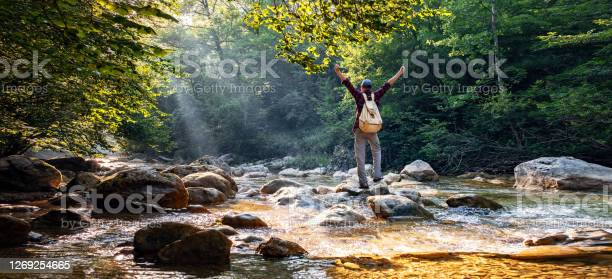 Photo of Happy male hiker trekking outdoors in forest near river
