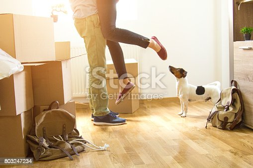 istock Happy man lifting woman in new house 803247234