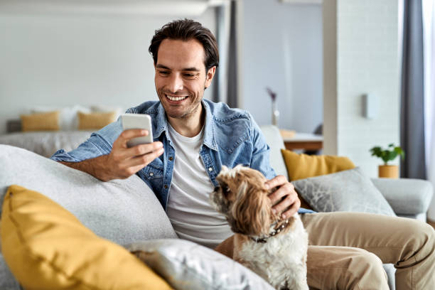 Happy man texting on mobile phone while relaxing with his dog at home. stock photo