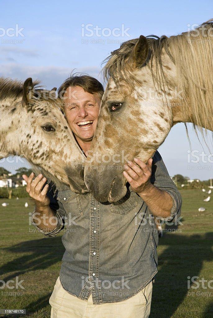 happy man with horses stock photo