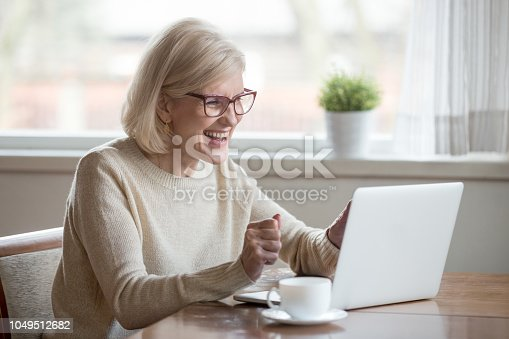 istock Happy mature businesswoman excited reading good news looking at laptop 1049512682