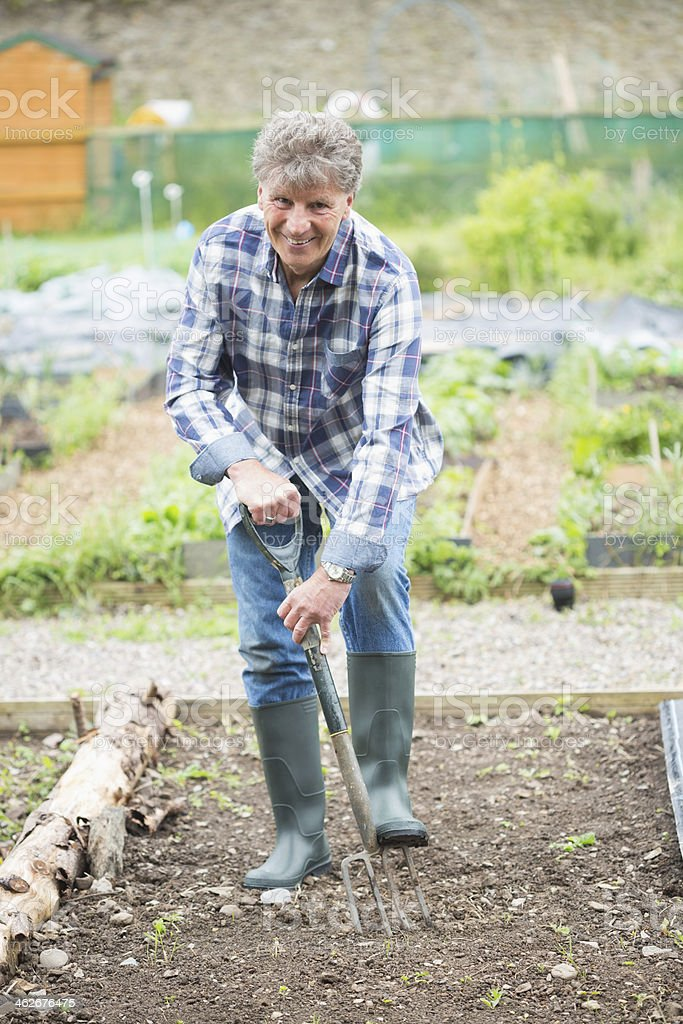 Happy mature gardener plowing royalty-free stock photo