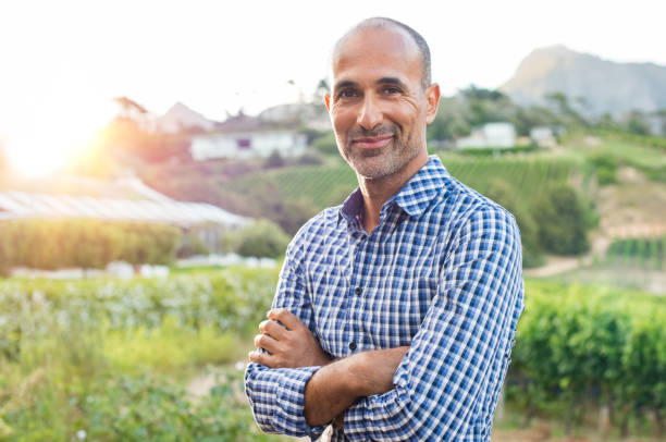 Happy mature man Portrait of a proud mature farmer standing with folded arms with vineyard in background. Mature satisfied winemaker looking at camera. Proud owner of the vineyard with crossed arms. smirking stock pictures, royalty-free photos & images