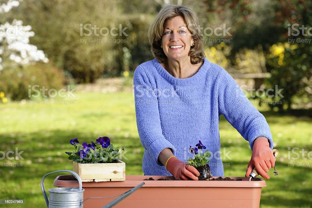 Happy Mature/ Senior Woman Planting Flowers In The Garden royalty-free stock photo