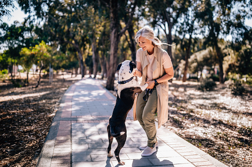 Happy mature woman having fun with pet dog in park