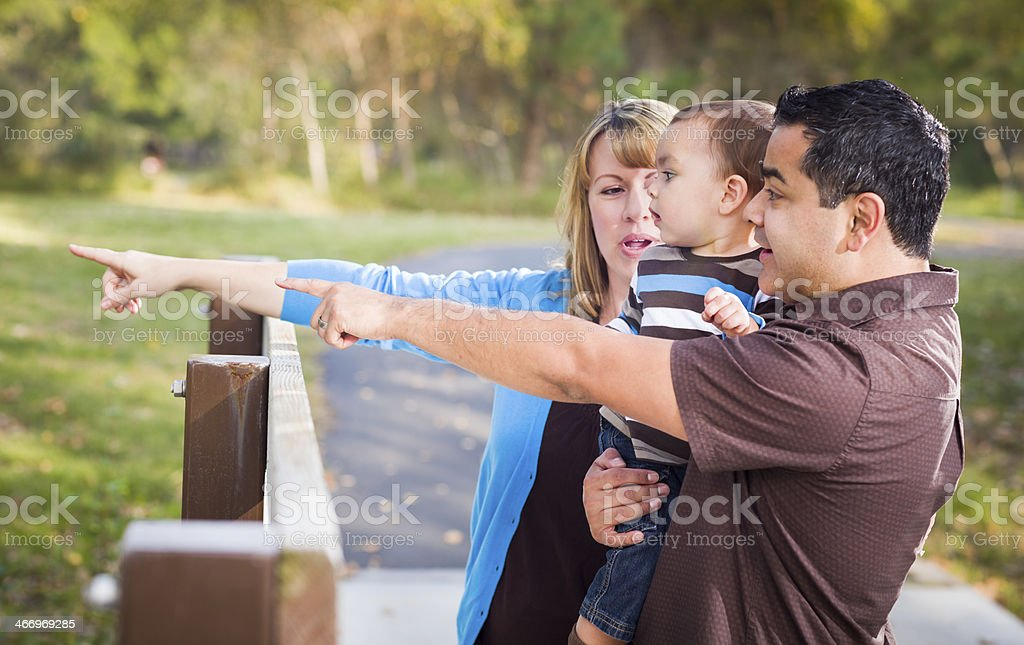 Happy Mixed Race Family Playing In The Park royalty-free stock photo