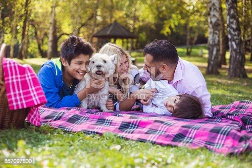 istock Happy mixed-race family 857097800