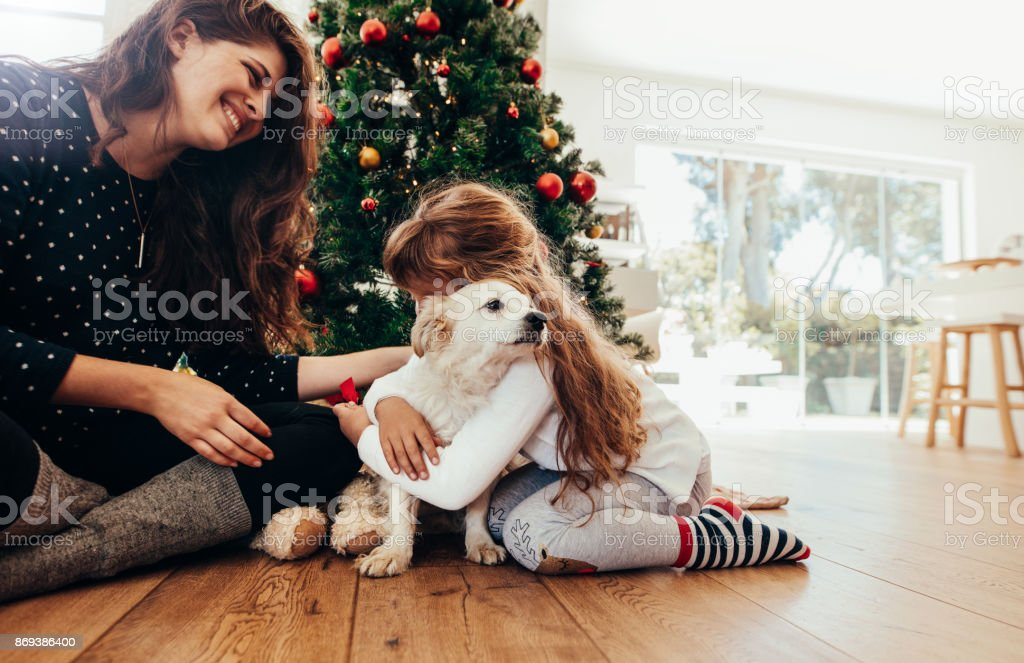 Happy mother and daughter celebrating Christmas with their dog. Mother and daughter celebrating Christmas with their dog at home. Little girl hugging a dog with decorated Christmas tree in the background. Animal Stock Photo