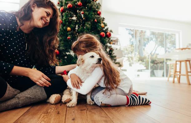 happy mother and daughter celebrating christmas with their dog. - псовый стоковые фото и изображения