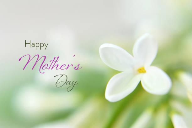 Happy Mothers Day Card mit weißen lila Blumen – Foto