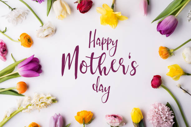 happy mothers day composition. flowers on white background. studio shot. - mothers day stock pictures, royalty-free photos & images