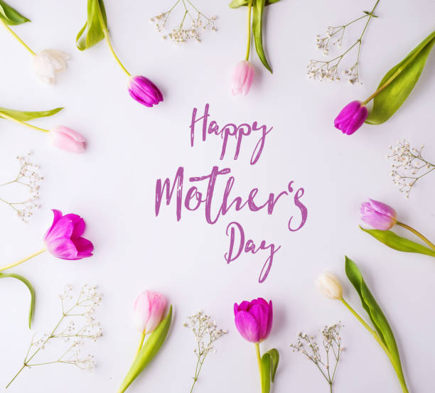 happy mothers day composition. flowers on white background. studio shot. - happy mothers day type stock photos and pictures