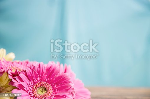 Happy Mother's Day daisy flower bouquet on blue background.  Spring, Easter, anniversary themes. Copy space.