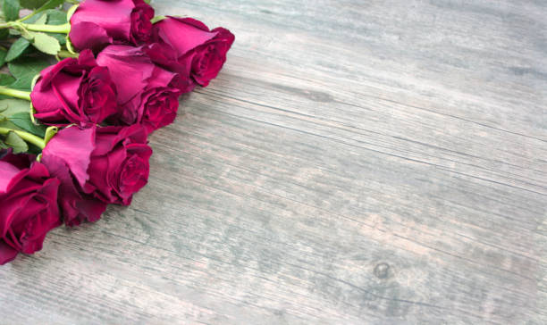 happy mother's day text with pink roses - happy mothers day type stock photos and pictures